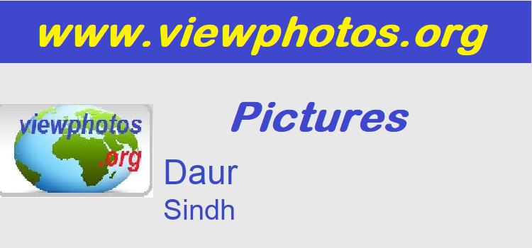 Daur Pictures