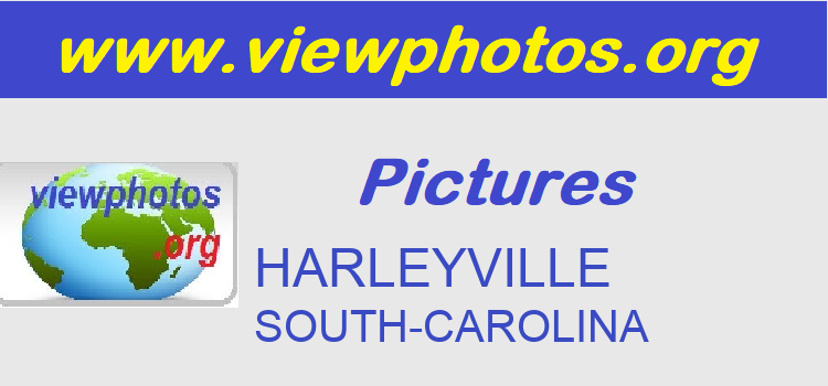HARLEYVILLE Pictures